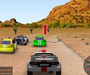 Play 3D rally
