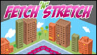 Fetch n Stretch